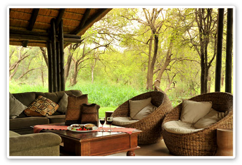 Outside Lounge Black Rhino Game Lodge Malaria Free Big Five Pilanesberg Game Reserve Accommodation Booking
