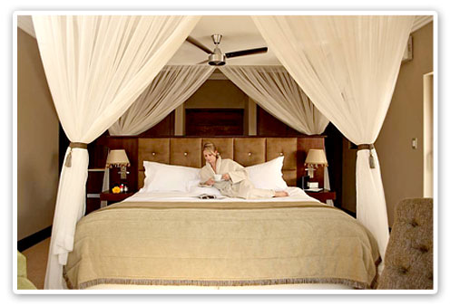 Executive Suite,Shepherd's Tree Lodge,Malaria Free,Big Five, Pilanesberg Game Reserve,Accommodation Booking